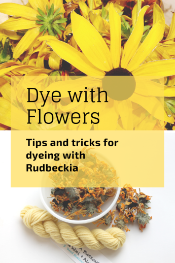 Have you wanted to give natural dyeing a try? How about using Rudbeckia, a beautiful North American native flower.
