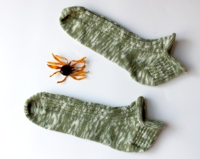 Stroll_Coneflower_socks