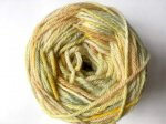 Plant dyed hand painted Garden Yarn - Spring Fling from knittyvet.com